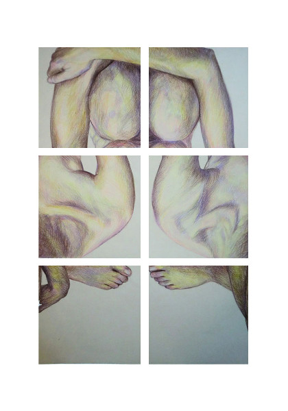 Biserka Petrovic, Siamese Twins-New Muse Deconstruction 3, coloured pencils drawing, 50-35 cm, 2012